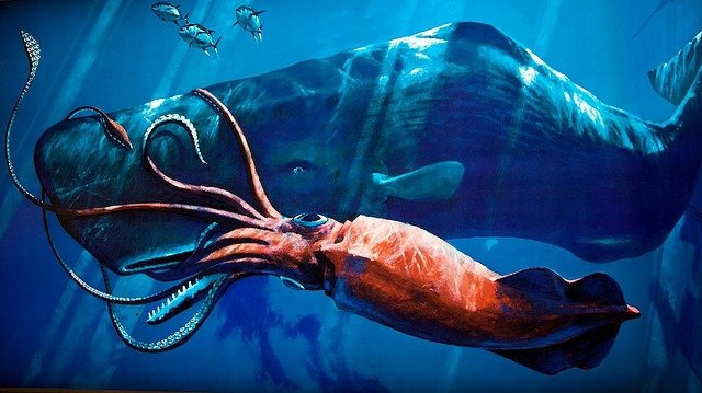 Sperm Whale:  Meet an Endangered Species