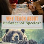 Why Teach about Endangered Species