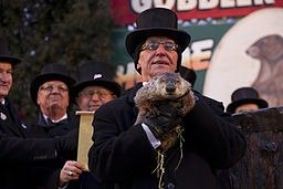 Punxsutawney Phil Anthony Quintano, CC BY 2.0, via WikiCommons