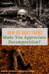 How Do Body Farms Make You Appreciate Decomposition-http://sciencealcove.com/2016/06/respect-body-farms-decomposition/