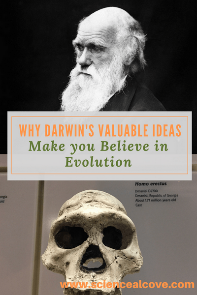 Do you believe in evolution?  It is hard to argue with the mounds of scientific evidence pointing to genetic changes in organisms producing new species over time.  For a great many people, Darwin's valuable ideas make them believe in evolution. #evolution #Darwin #afilliatelinks #science #biology