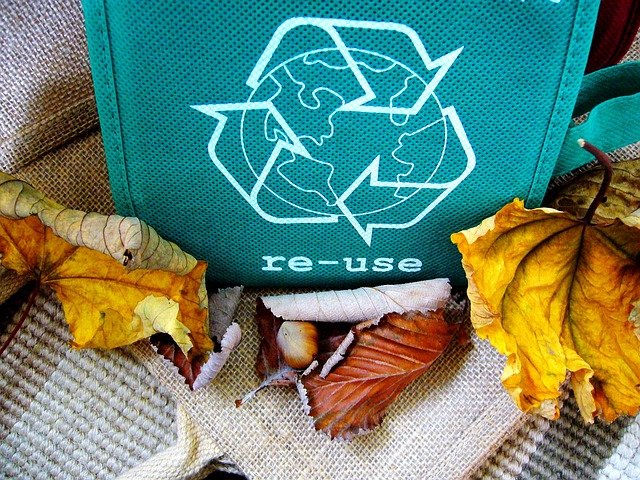 Up your green factor by recycling.