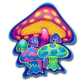 Oil-eating mushrooms