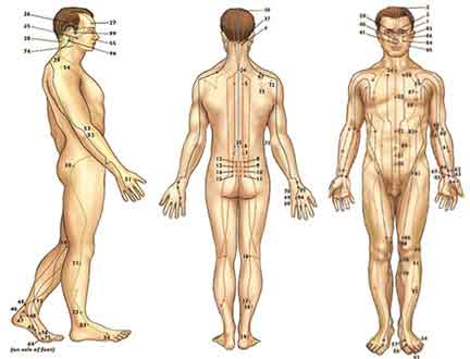 Hypertensive patients benefit from acupuncture treatments
