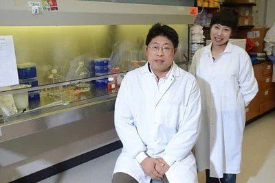 Plant-Based Compound May Inhibit HIV Infection, Research Shows