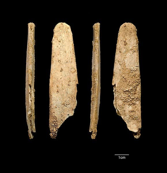 Neandertals, not modern humans, made first specialized bone tools in Europe