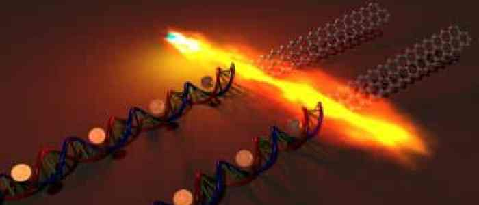 Stanford scientists use DNA to assemble a transistor from graphene