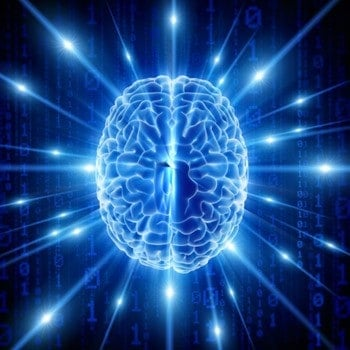 Does 'free will' stem from brain noise?