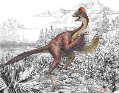 Scientists announce 'chicken from hell' dinosaur find in N. America