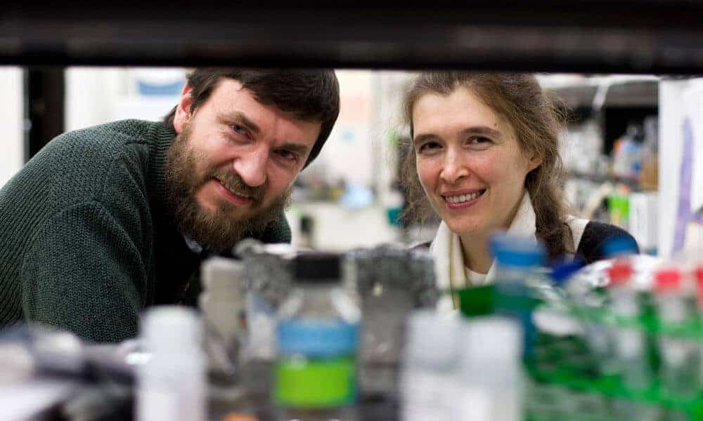 Less effective DNA repair process takes over as mice age