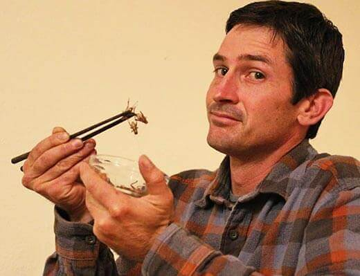 Taste is key in promoting insect-based food