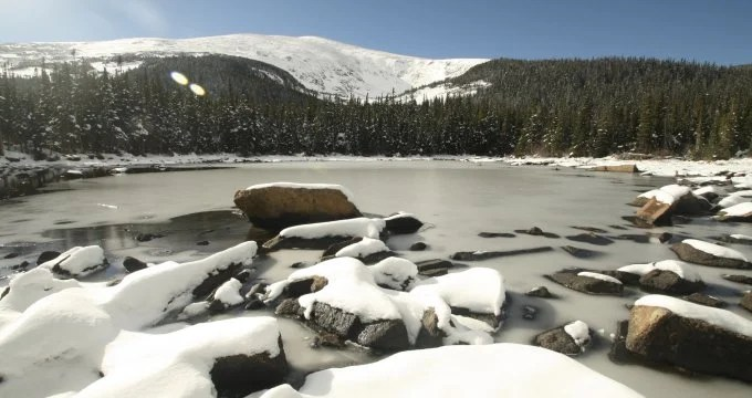 Earlier snowmelt carries drastic consequences for forests