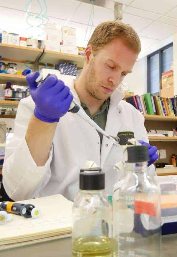 Products that target telomeres could backfire, fueling cancer