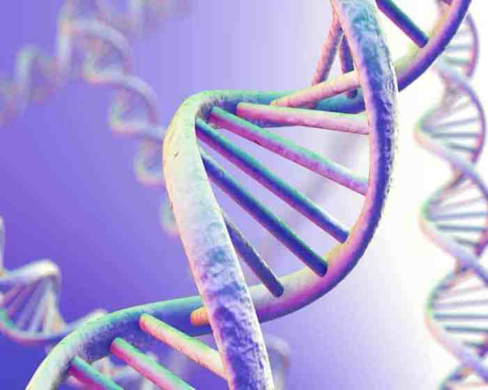 New Gene Interaction Appears to be Associated with Increased MS Risk