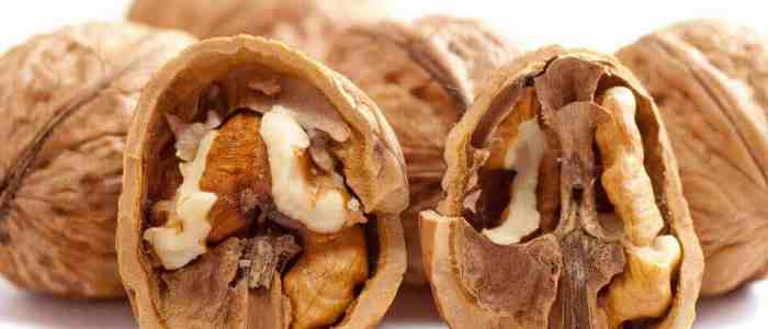 Walnuts light up the brain to keep you feeling full