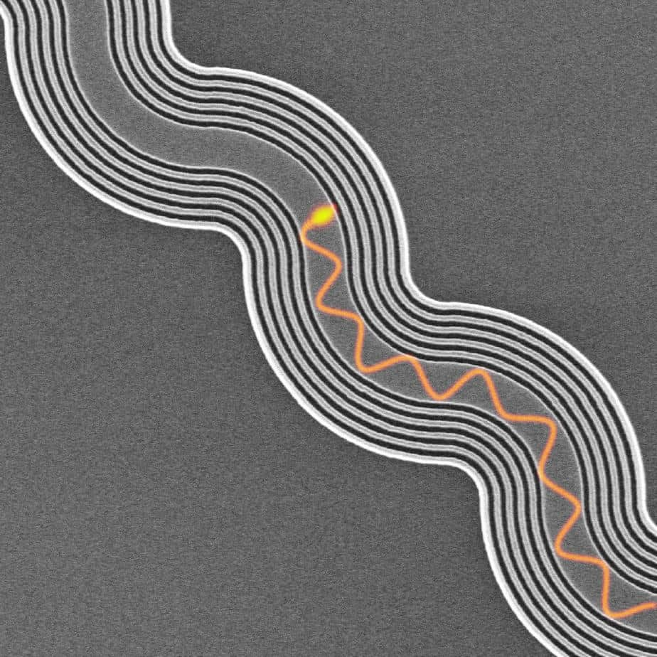 Trapping light that doesn't bounce off track for faster electronics