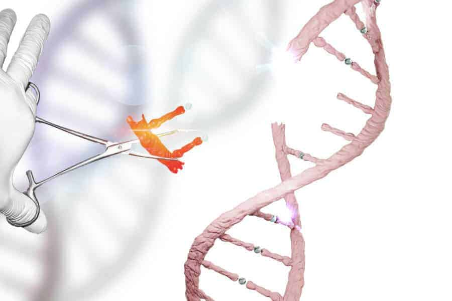 Genome editing reduces cholesterol in animals, humans could be next