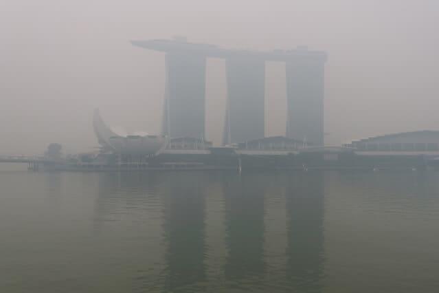 Burning Sumatran peat causes haze in Singapore