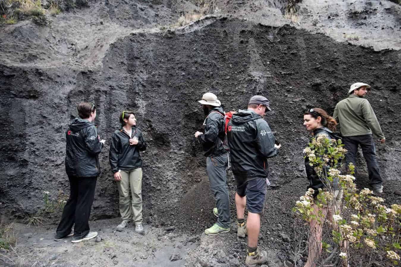 Microbes could influence earth's geological processes as much as volcanoes