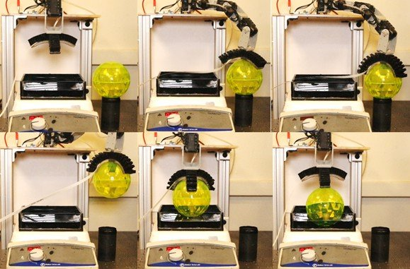 Robot arm 'tastes' with engineered bacteria