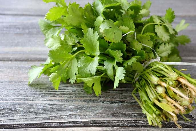 How cilantro works as a secret weapon against seizures