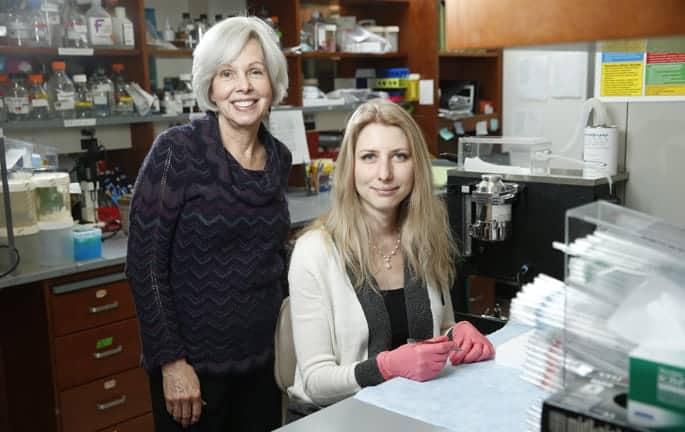 Potential second-line melanoma treatment identified