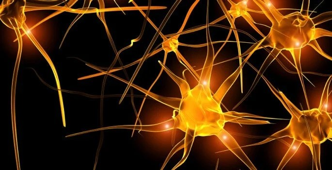 How nerves may lose their insulation