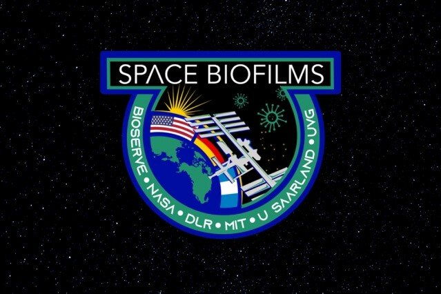 3 Questions: How to control biofilms in space