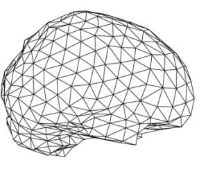 brainmesh
