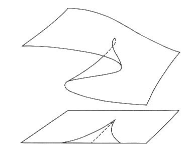 i-1c820ae4a0cbb70038def36c9137c310-cusp_surface.png