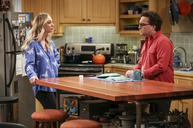 The Big Bang Theory The Propagation Proposition