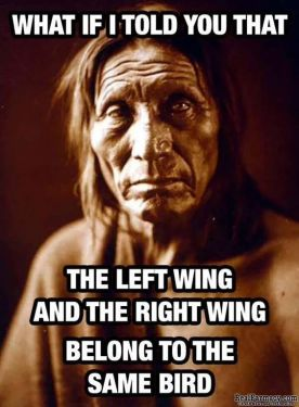 left wing right wing