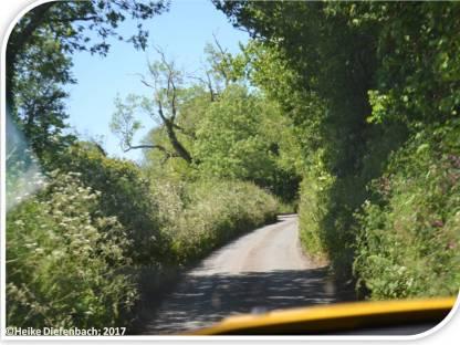 Lanes 1