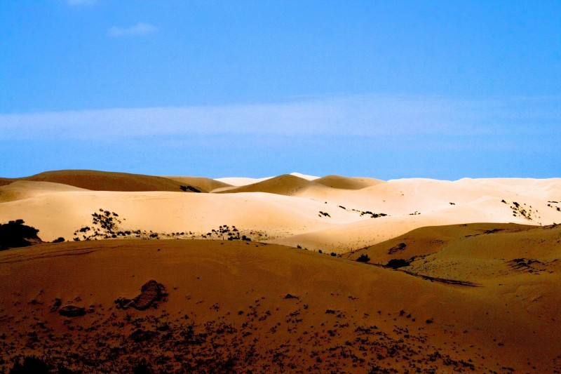 Desertification Effects Causes And Examples Top 10 List