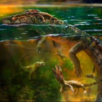 160-Million-Year-Old Fossil Shows That Choristodere Reptiles Provided Post-Natal Care For Young