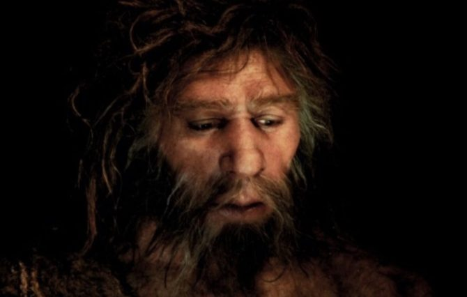 Fossil reconstruction Neanderthal man