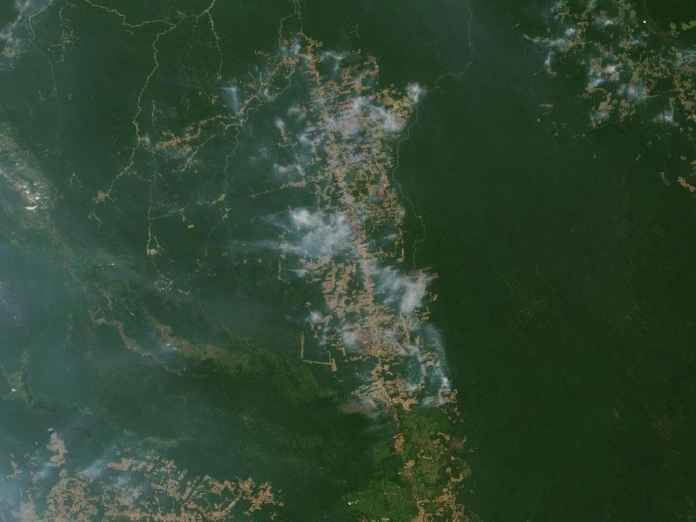 Images from space show the extent of damage to Amazon rainforest due to fires