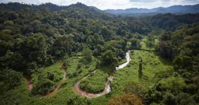 Lost City Discovered in the Honduran Rain Forest