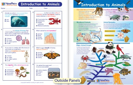 W944645 Introduction To Animals Visual Learning Guide