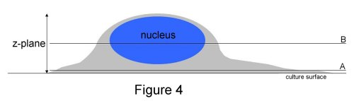 figure-4-final