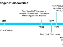 pseudogene timeline