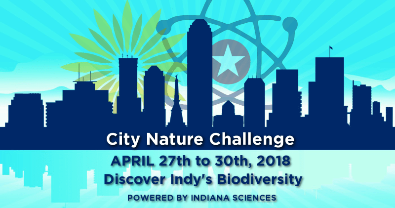 Indianapolis City Nature Challenge
