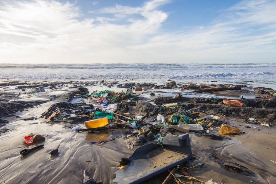 Plastisphere – the oceans of plastic