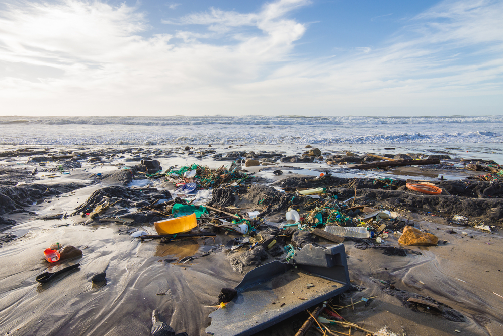 Plastisphere – the oceans of plastic