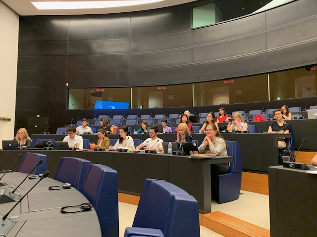 Room Strasbourg Summer school 2019 ESMH