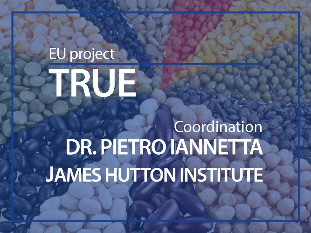 EU project : TRUE