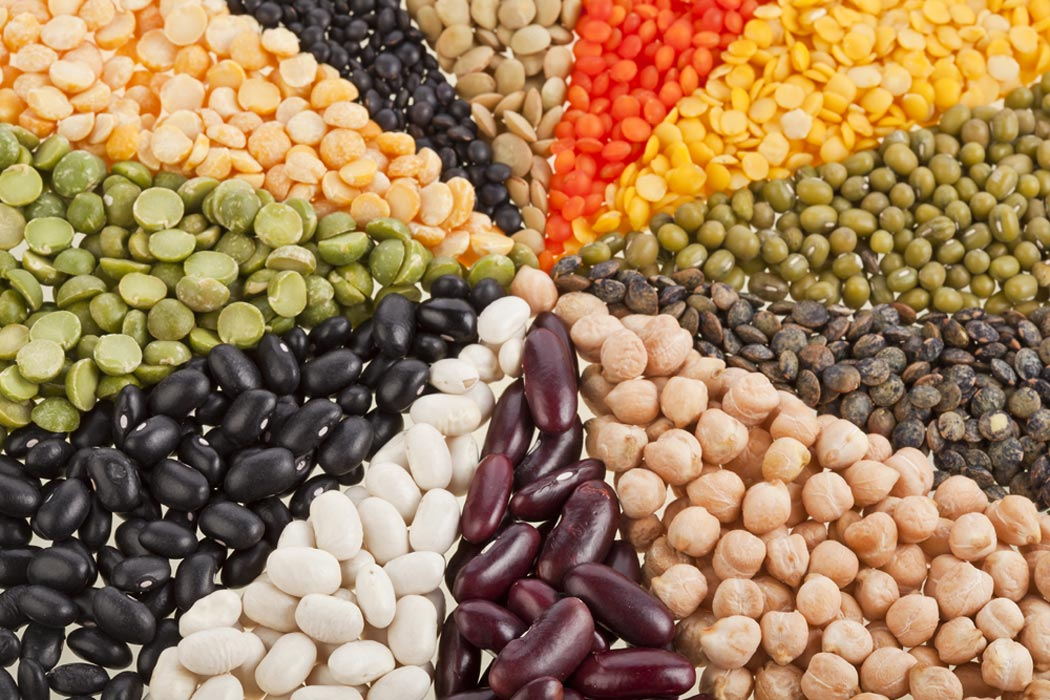 Bean there, done that : why we should eat more beans and legumes in general