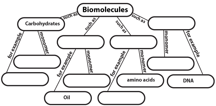 Biochemistry Concept Map Organic Compounds Answer Key