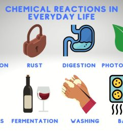 Examples of Chemical Reactions in Everyday Life [ 1000 x 1500 Pixel ]