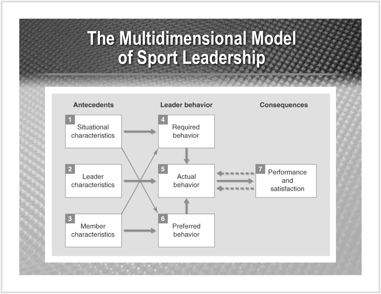 Chelladurai's Multidimensional Model of Leadership in Sport